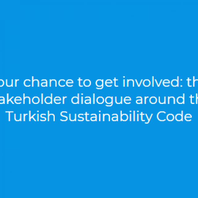 Your chance to get involved: the stakeholder dialogue around the Turkish Sustainability Code